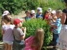 Červen 2014 – Návštěva žáků MŠ na školním pozemku